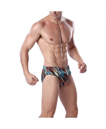 Plus Size Oblique Stripes Swim Briefs